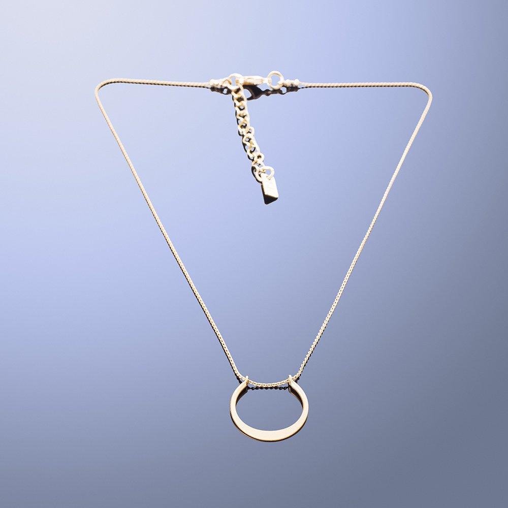 תמונת מוצר, שרשרת דקה קצרה, בצבע זהב, עם תליון קטן בצורת פרסה.